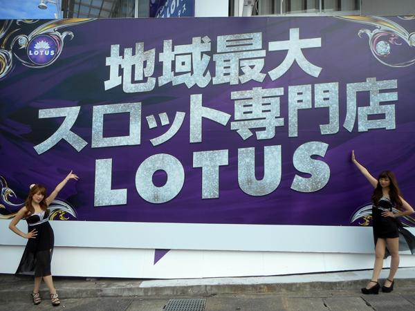 1120_lotus_002