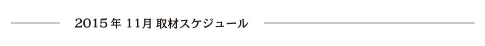 report_2015_11_schedule2