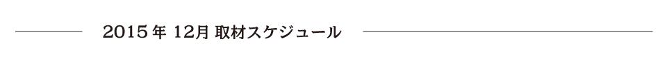 report_2015_12_schedule2