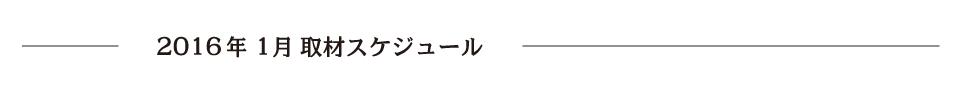 report_2016_1_schedule2
